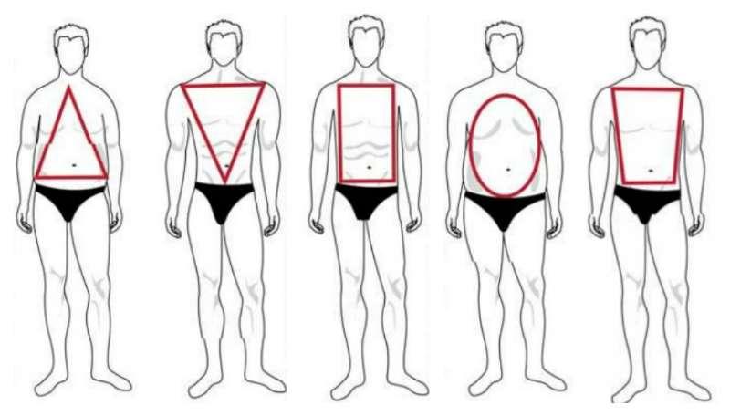Как правильно одеться мужчине. 5 типов фигуры