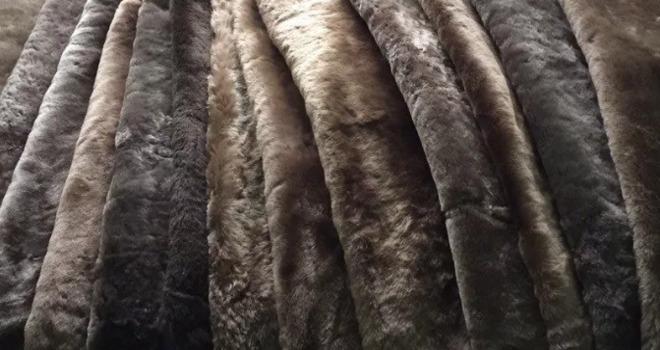 Что такое мутон и чей это мех, какого животного