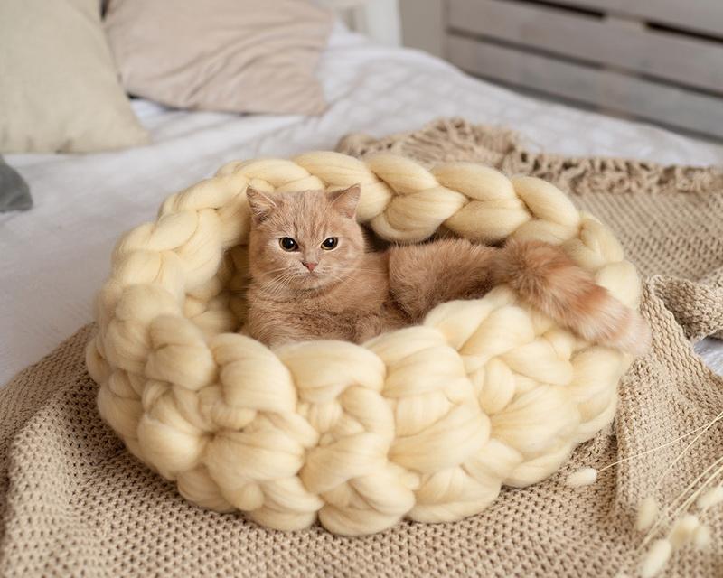 Как сшить лежанку для кота своими руками по выкройкам