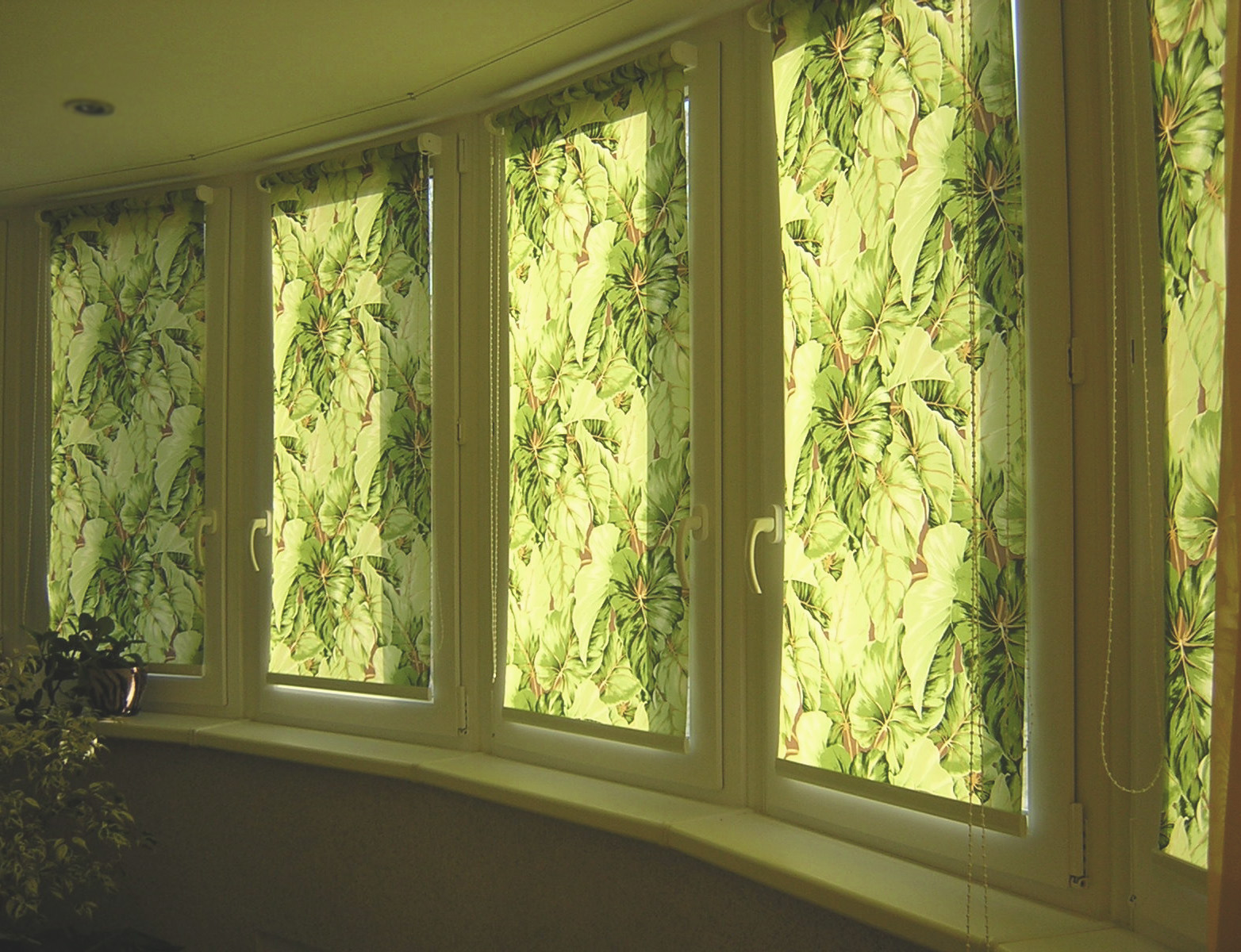 тканевые жалюзи на окнах