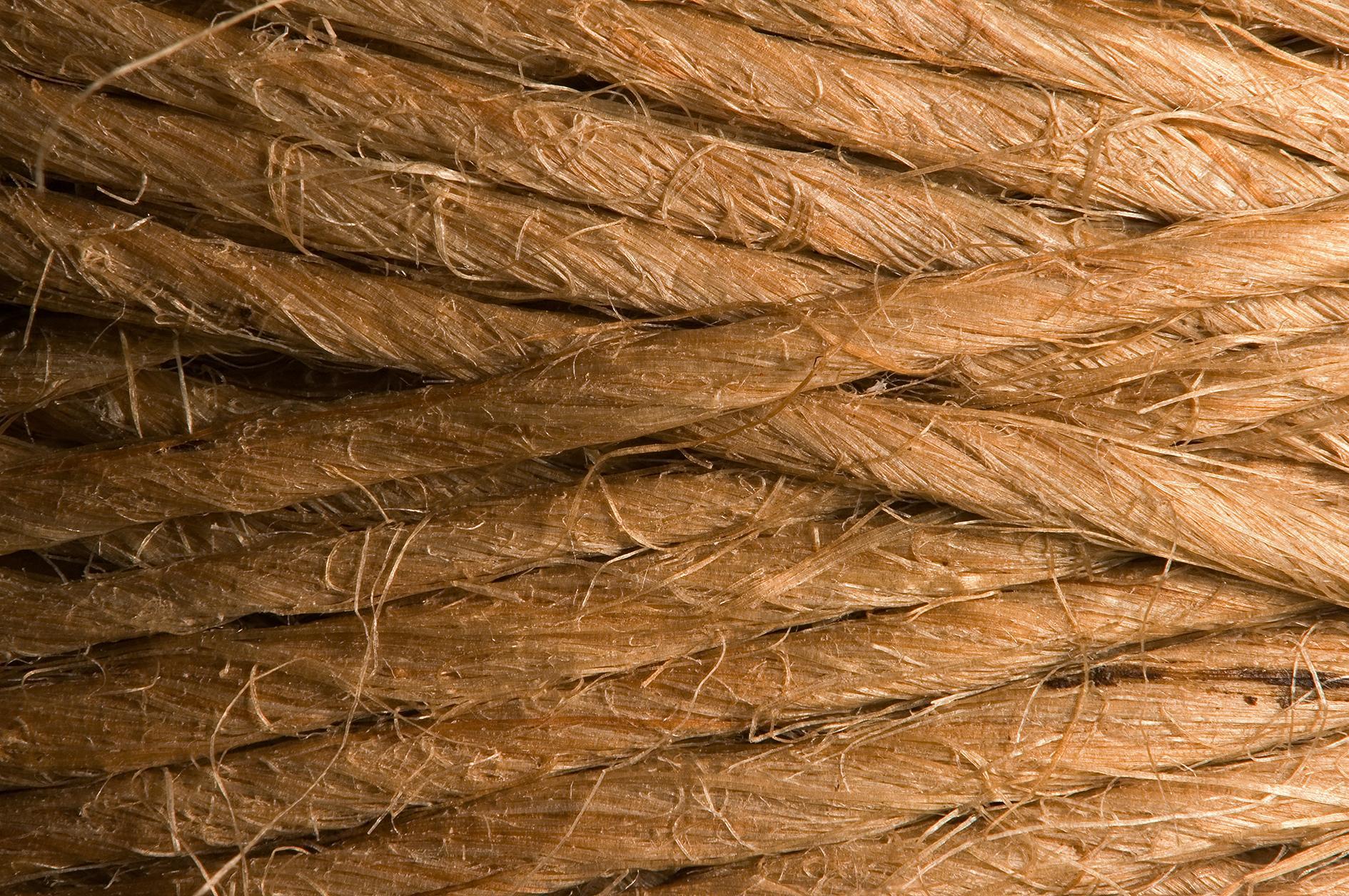 Волокна сизаля: свойства, польза и применение